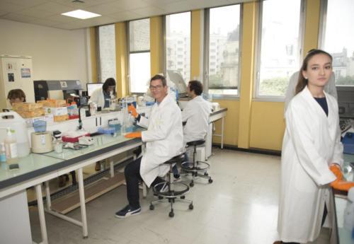 Manips au labo- équipe Le Panse