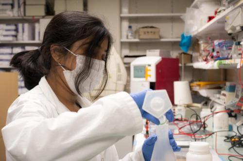 Mouly, post-doctorante, prépare un gel d'électrophorèse